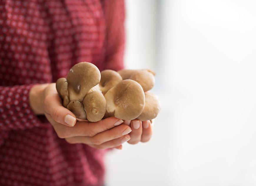 """Celebrele ciuperci """"Champignon"""", beneficii uriașe pentru sănătate. Ce se întâmplă în organismul tău atunci când le consumi"""